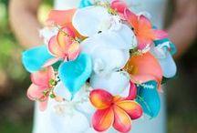 ❤ Wedding ❤ / Wedding ideas, wedding preparations, wedding food, hair, dress, flowers....anywhere to wedding