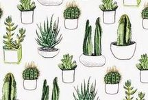 ❈ Patterns ❈ / Here's some awesome patterns ;)