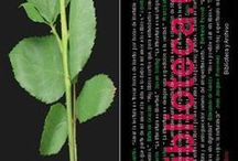 Marcapáginas Día del Libro / Álbum de los marcapáginas editados por Biblioteca y Archivo UAM para el día del libro