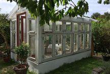 Drivhusbyggeri / Drivhus bygget af gamle vinduer, på fundament af lecablokke.