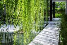 Ogrody i balkony