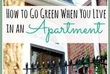 Eco-Friendly Apartment Living / Going green doesn't need to be difficult or expensive. Rent.com tells you how to live in an eco-friendly apartment. / by Rent.com