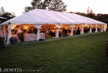 Beautiful Wedding/Event Tents / Tenting for any occasion.
