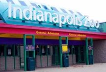 Indianapolis Living / Whether your new to the city or just visiting, Rent.com tells you what to do in Indianapolis, Indiana. From where to go for happy hour to the best dog parks, check out what Indianapolis has to offer. / by Rent.com