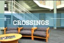 Osprey Crossings