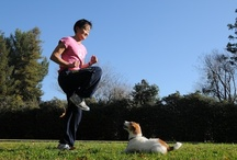Exercise With Your Pet!