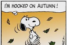 Fall-favorite season!