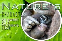 N-Mother's love / In nature mommy is mommy!!!