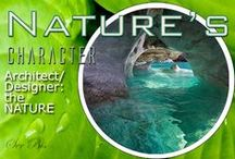 N-Architect/Designer: the Nature / Nature is the best architect in the world Dream places