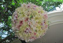 Nature & fleurs / Trop beau