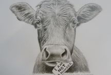Animal rights / Everything animal rights related