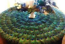 Peacock and peacock... / by Rolita Fakih