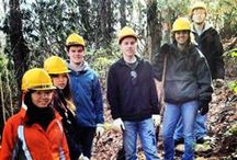 Future Parkway Stewards / Young people can find fun, learning and a sense of accomplishment helping to care for and maintain the Blue Ridge Parkway.