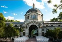 My Bronx Zoo Wedding / by Kara Grenier