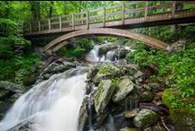 Blue Ridge Parkway Waterfalls / Waterfalls throughout the Blue Ridge Parkway are beautiful any time of the year.