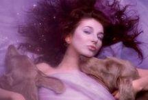 Kate Bush - 魔妖精