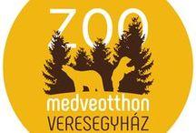 Medveotthon - Bear Farm / 5,5 hektár, ahol az állatok boldogan élnek. Medvék, farkasok, rénszarvas, mosómacik