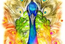 Let Me See Your Peacock... / I love me some #peacocks! / by Beth Avant