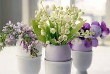 Seasons: Spring