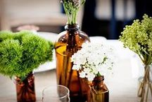 Terrariums and House Plants / Bring some green into your home with these cute indoor gardening solutions. Check out our containers (jars to tin cans to buckets) to create many of these projects on your own.  http://www.thecarystore.com/containers-categories/packaging-and-containers
