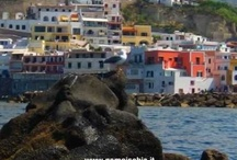 Ischia island snorkeling