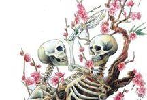 schedels / schedels