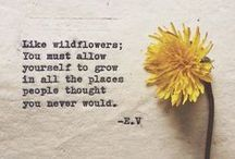 Wise words / Inspirational words, poems and quotes about nature, wild places, art .....