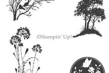 Stampin' Up! - Serene Silhouettes / Jaarcatalogus /Annual catalogue 2014-2015