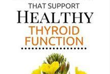 Thyroid & Fertility