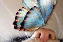 mariposas♥