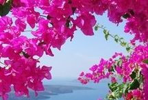 My most beautiful Greece..;)..♡ ♡ ♡ / Most beautiful Greece..;)