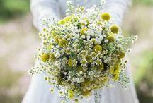 wedding lumi & miika