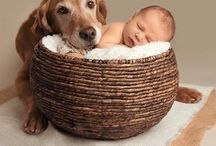 Baby/dieren foto's