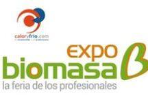 Expobiomasa 2014 / Información relacionada con la feria Expobiomasa 2014: Vídeos grabados durante la feria Expobiomasa 2014, productos presentados a la Galería de la innovación