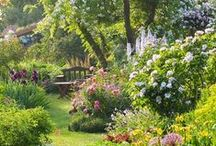 Kert inspiráció - Inspiration to our garden / Angol kert - sok virág, kevés füves rész, kerti utak