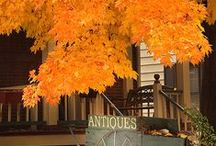 Fall / Favorite Fall Scenes from around the state