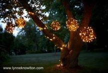 Grapevine Decor / by Bella Marie