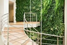 Green Spaces / Biophilic office designs that will reduce stress, enhance creativity and bring a little joy into your space.
