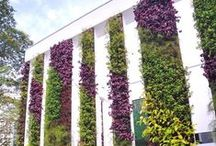 Architectural: Green Facade / Vertical Gardens...