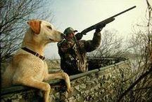 Hunting Tips