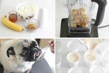 Homemade Pet Treats