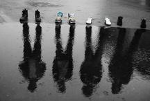 Photography Ideas / by Gina Prnjak