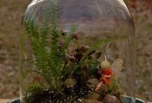 Fairy Terrariums, Micro Minis, and Itty Bitties / Miniature houses, fairies, and accessories for fairy terrarium gardens