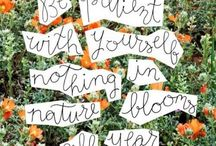Quotes and Beautiful Words / Inspiration and painted pictures by words