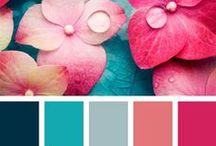 J - Kolor Paleta