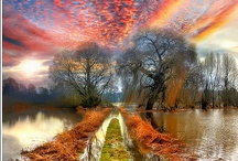 Beautiful Nature / by Paolo Masucci
