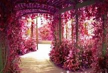 Là est un jardin, une terrasse - oudoor, patios