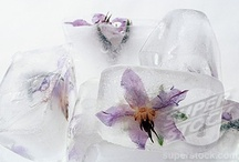 Ice By Design 《》 / by ★~ CelestialSkye  Kat ~ ★