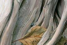 Autour des textures - textures