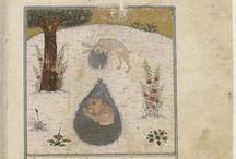 Indian & Persian Miniatures 2